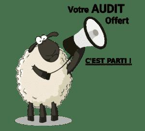 Votre Audit offert